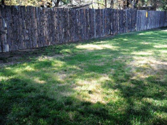 La Junta, CO: Green Grass to enjoy or sun yourself