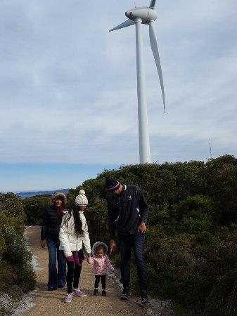 Albany, Australia: 20160714_102059_large.jpg