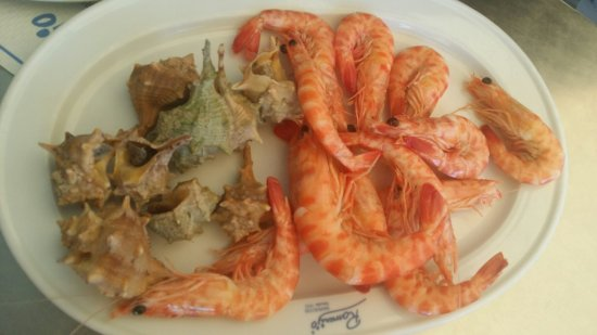 different kinds of prawns