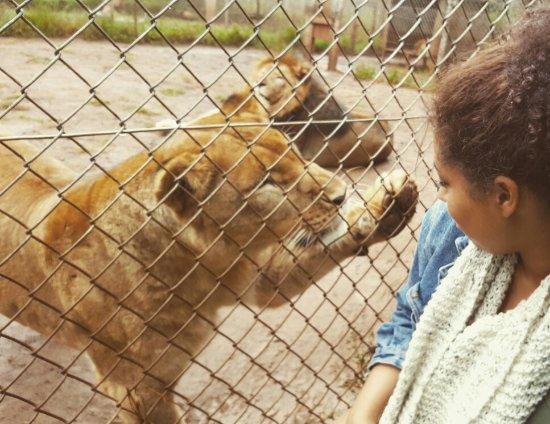 Nairobi Education Centre - Animal Orphanage: IMG_20160622_104556_large.jpg