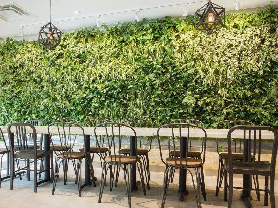 light cafe picture of light cafe toronto tripadvisor. Black Bedroom Furniture Sets. Home Design Ideas