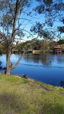 Belmont, Australia: Tomato lake