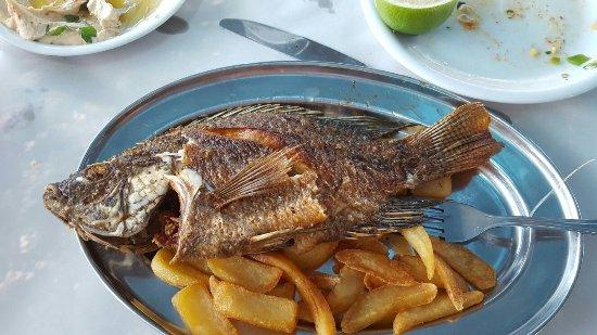 Migdal, Israel: Ali's Restaurant
