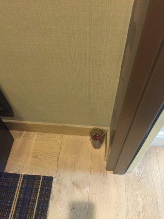 Hyatt Regency Lake Tahoe Resort, Spa and Casino: Garbage and refrigerator sitting outside my room