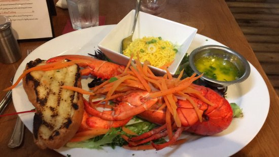 "North Sydney, Kanada: My lobster ""Alfredo"" I named him, a 7lb released back into the wild lobster and the cool article"