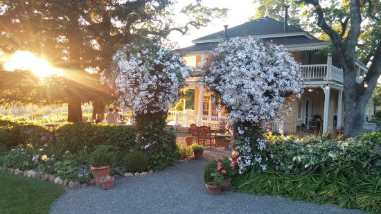 Beltane Ranch : Historic ranch house and gardens overlooking estate vineyards.
