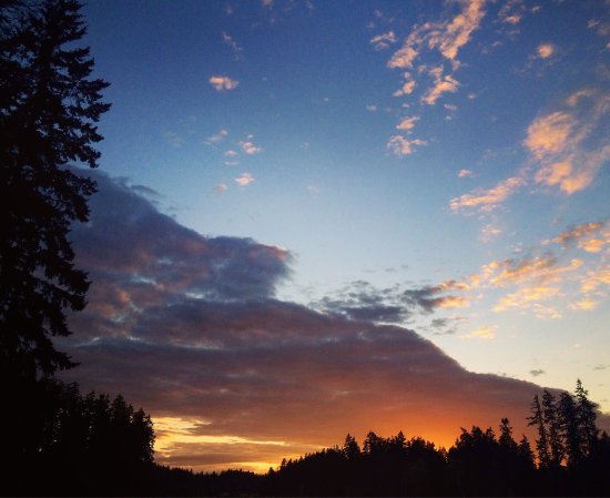 Black Creek, Canadá: photo7.jpg