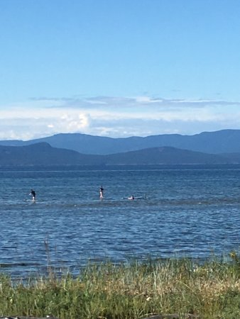 Nanoose Bay, Canada: The best place to paddleboard