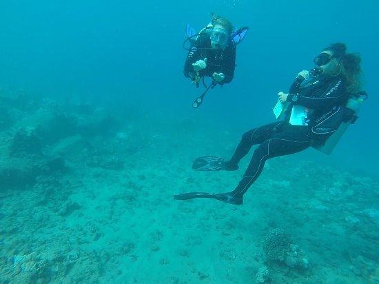 Koloa, هاواي: photo1.jpg