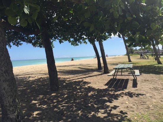 伊娃海灘照片