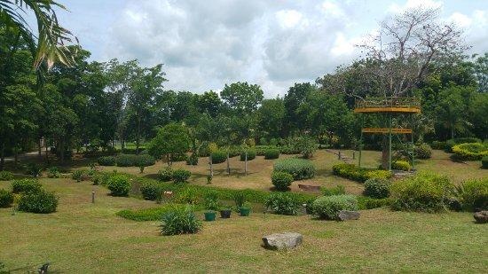 20160715_112145_large.jpg - Picture of Kong Garden Resort, Pak Chong ...