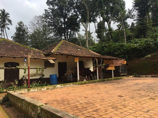 A scintillating stay amidst coffee plantations