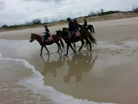 Tassiriki Ranch Beach Horse Riding & Holiday Cabins- Day Tours: A fantastic way to connect with the family