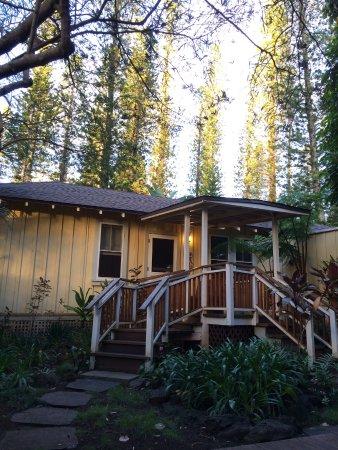 Hotel Lanai: The cottage