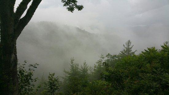 Great Smoky Mountains National Park, Caroline du Nord : 20160715_181740_large.jpg