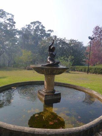 Faulconbridge, Australia: The gardens are very pretty