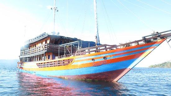 Blue Bay Divers: klm sunshine