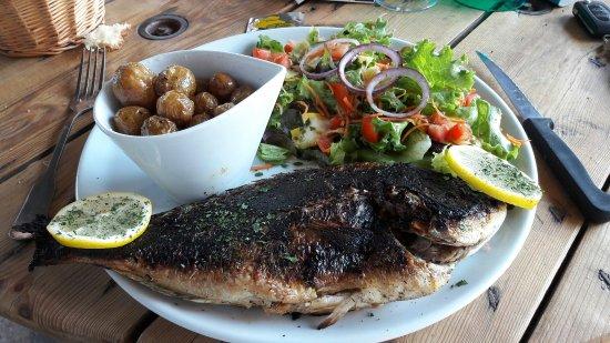 Sylvereal, Francia: Dorade cuite au feu de bois