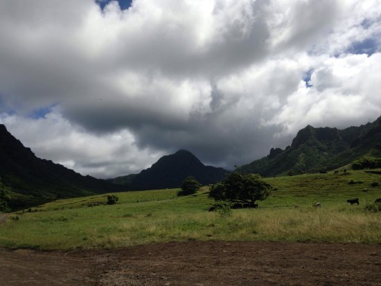 Kaneohe, Hawái: photo3.jpg