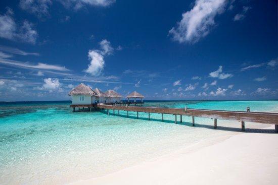 Raa Atoll: The Loama Spa overwater villas