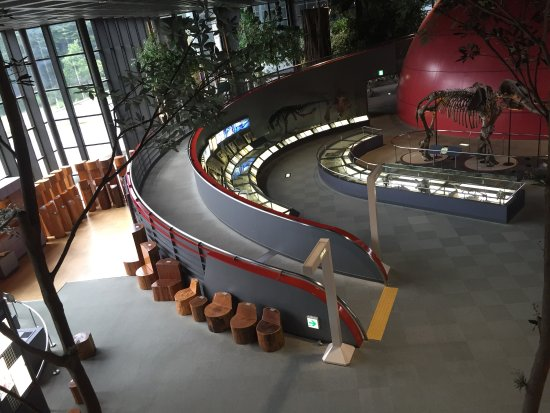 ‪Hyogo Prefectural Operated Human and Nature Museum‬