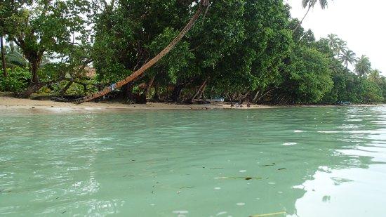 Bilde fra Guadalcanal Island