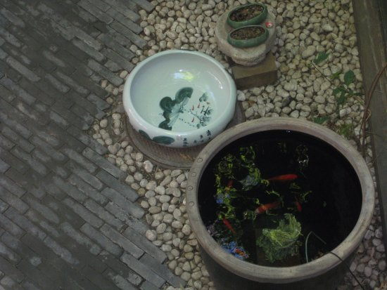 The Orchid Hotel: courtyard at the Orchid