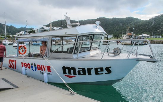 Pro Dive Magnetic Island