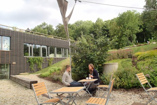 Brno, Tsjekkia: chatting in green while sipping coffee