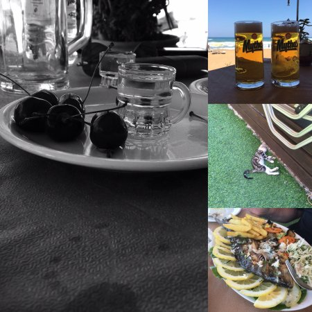 Nea Kydonia, Yunani: Lazy summer days spent in the best place
