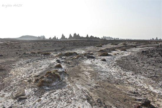 Djibouti: Le Lac ABBE, lieu désertique