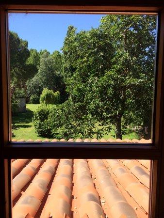 El Jardin De La Huerta: photo2.jpg