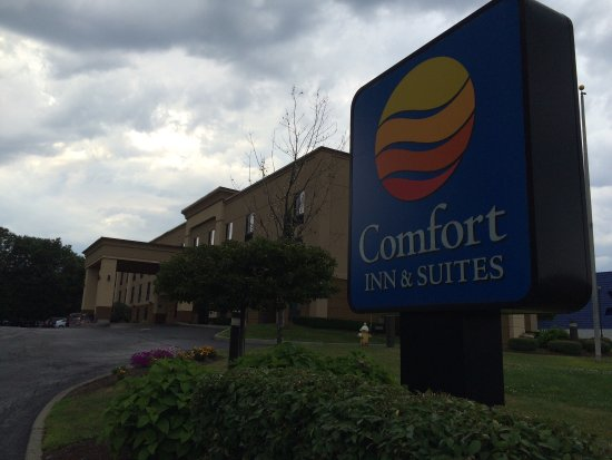Comfort Inn & Suites / Wolf Road: photo0.jpg