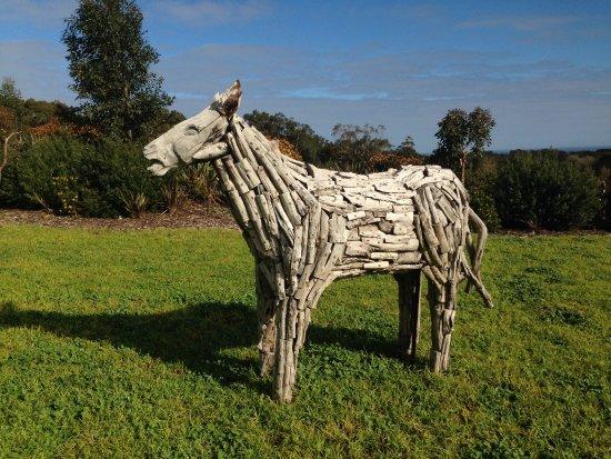 Mornington Yarımadası, Avustralya: Imaginative work