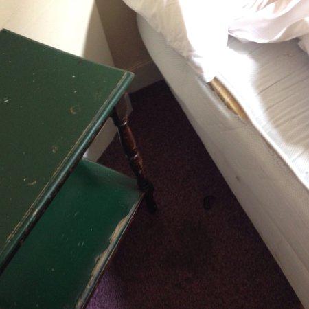 Hotel Tamara: photo1.jpg