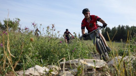Sababike: Plenty of options for fast and flowing trails