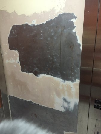 Quality Inn: The room was decent. The elevator was hot and the door was buffed (I hope they are planning on p