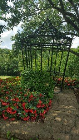 Cheekwood Botanical Gardens & Museum of Art: 20160715_122550_large.jpg