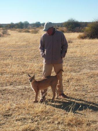N/a'an ku se Lodge and Wildlife Sanctuary: Salomon et son caracal, lors d'une promenade matinale dans la brousse