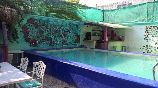 Hostel Quetzal: Patio