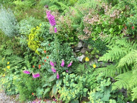 Rydal, UK: ライダルマウントの庭