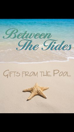Biddeford Pool, ME: Between The Tides Gift Shop