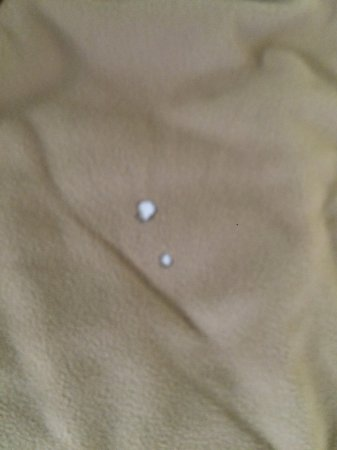 Hardeeville, Carolina Selatan: cigarette holes in blanket on our bed