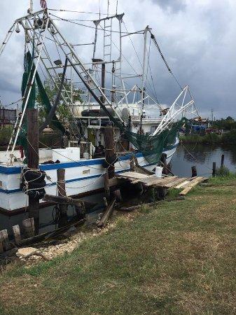 Bayou La Batre, AL: Catalina Bayou