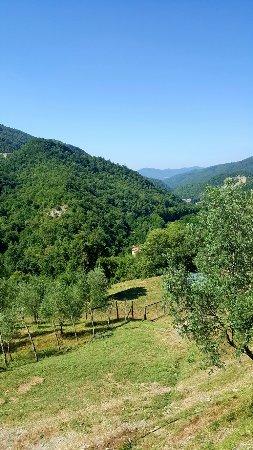 San Godenzo, Italia: Agriturismo il Colle