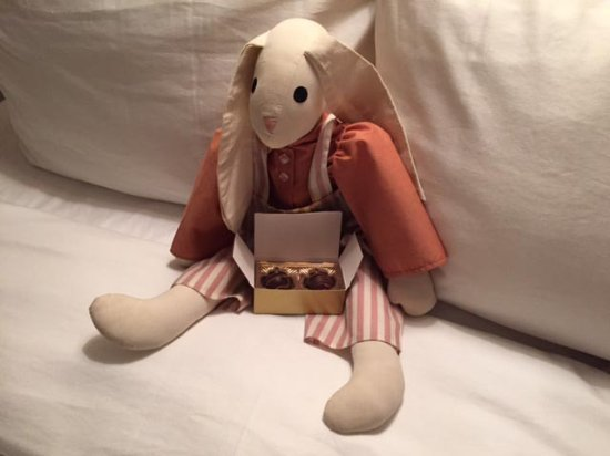 Saint Johnsbury, VT: The Rabbit of the room with chocolates.