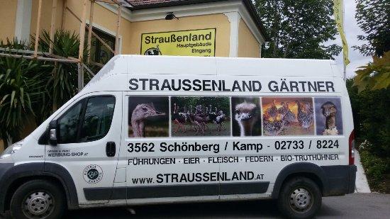Schoenberg am Kamp, Áustria: 20160716_115629_large.jpg
