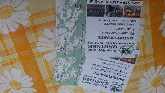 Schoenberg am Kamp, Áustria: 20160716_135419_large.jpg