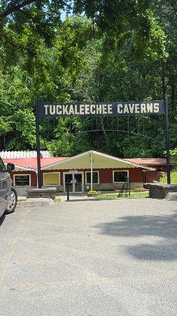 Townsend, TN: 20160623_142452_large.jpg