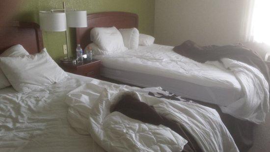 Allendale, MI: My room.
